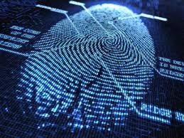 2013: el año de la megabrecha en la seguridad cibernética