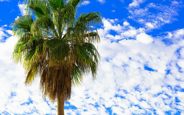 Sólo el 10% de los españoles apaga el móvil en vacaciones